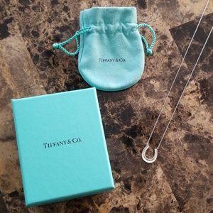 Beautiful Tiffany & Co. Sterling Silver Horsesho